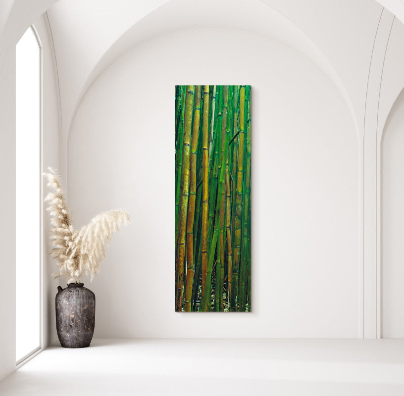 Bamboo Forest in Home