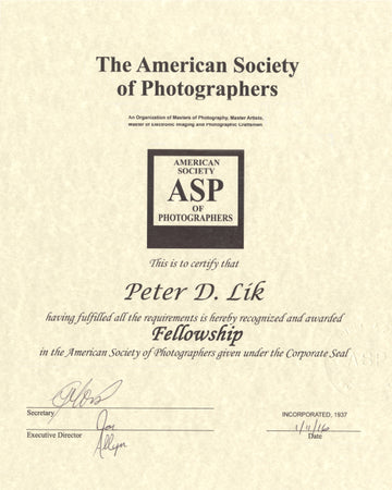 The American Society of Photographers, Fellowship Award, presented to Peter Lik in 2016.