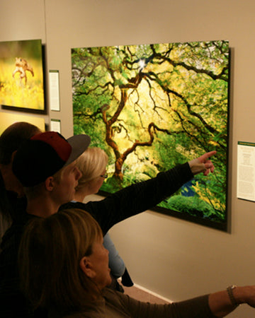 Visitors viewing photograph, Inner Peace, at The Smithsonian National Museum of Natural History in 2012.