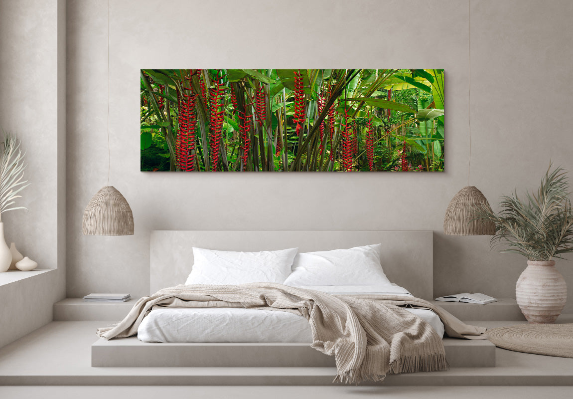 Blushing Forest in Home