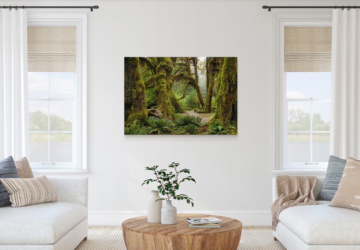 Deep Forest in Home