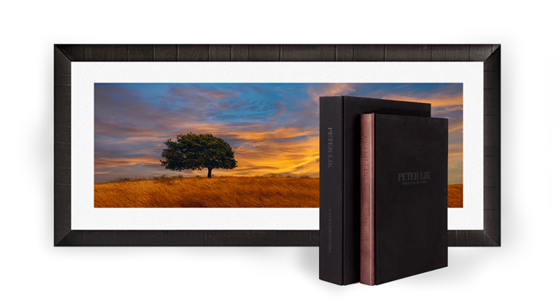 Equation of Time book and slipcase standing on end in front of a framed photograph of a tree in a grassy field.