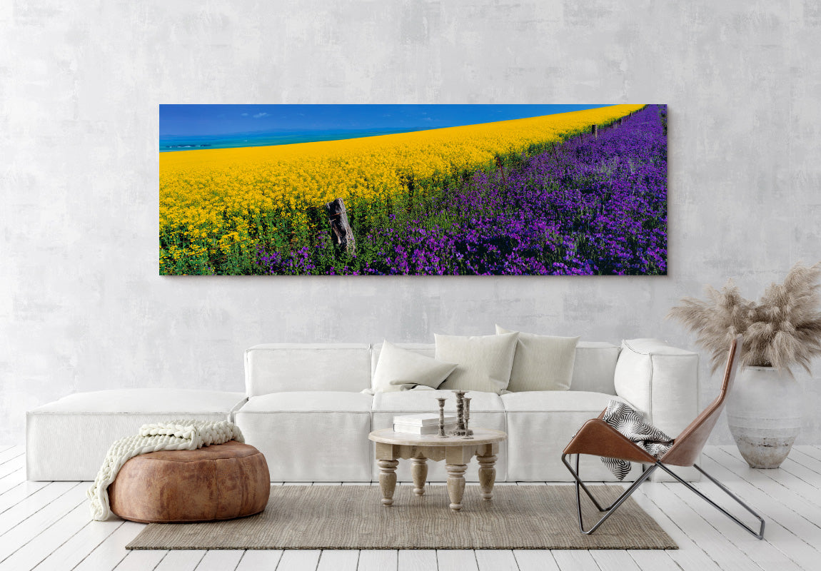 Lavender Hill in Home