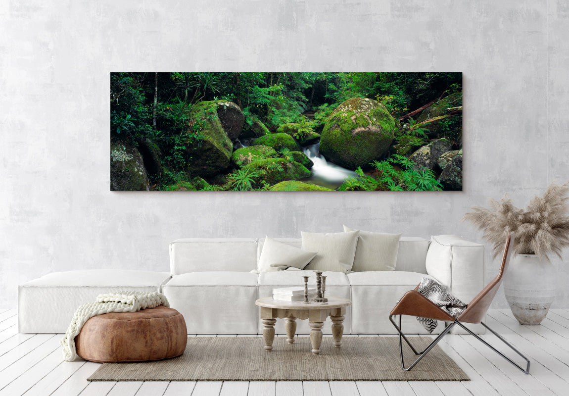 Mossy Boulders in Home