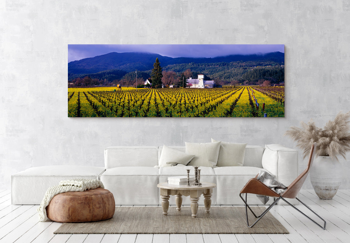 Napa Valley in Home
