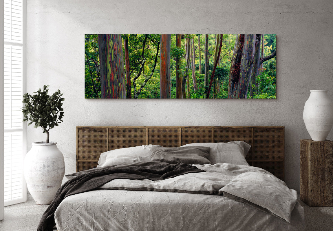 Painted Forest in Home