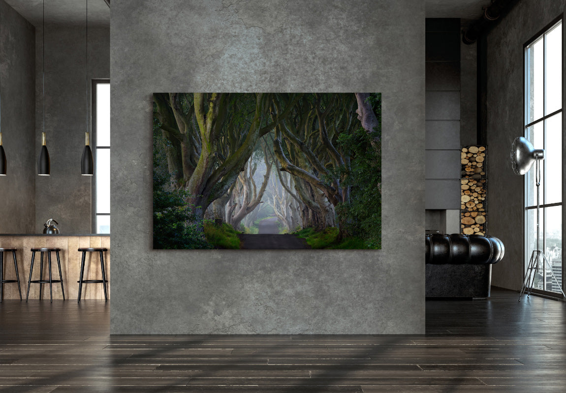 Sacred Grove in Home