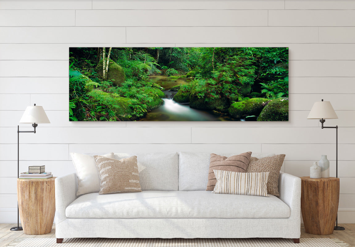 The Daintree in Home
