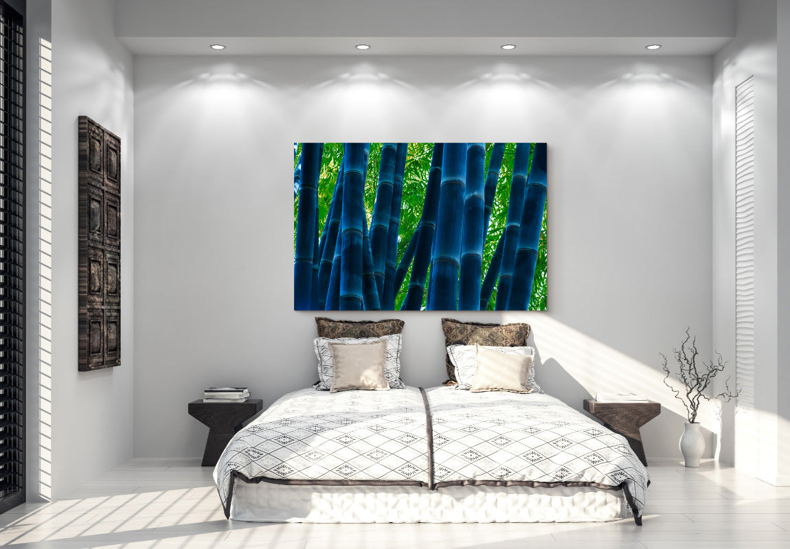 Tranquil Forest in Home