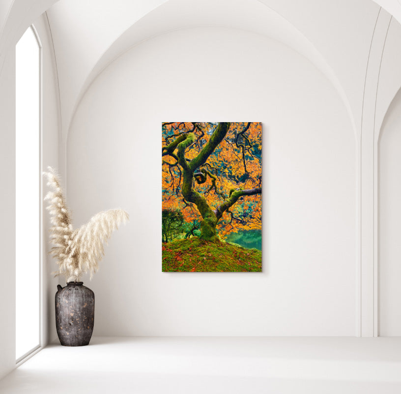 Tree of Beauty in Home