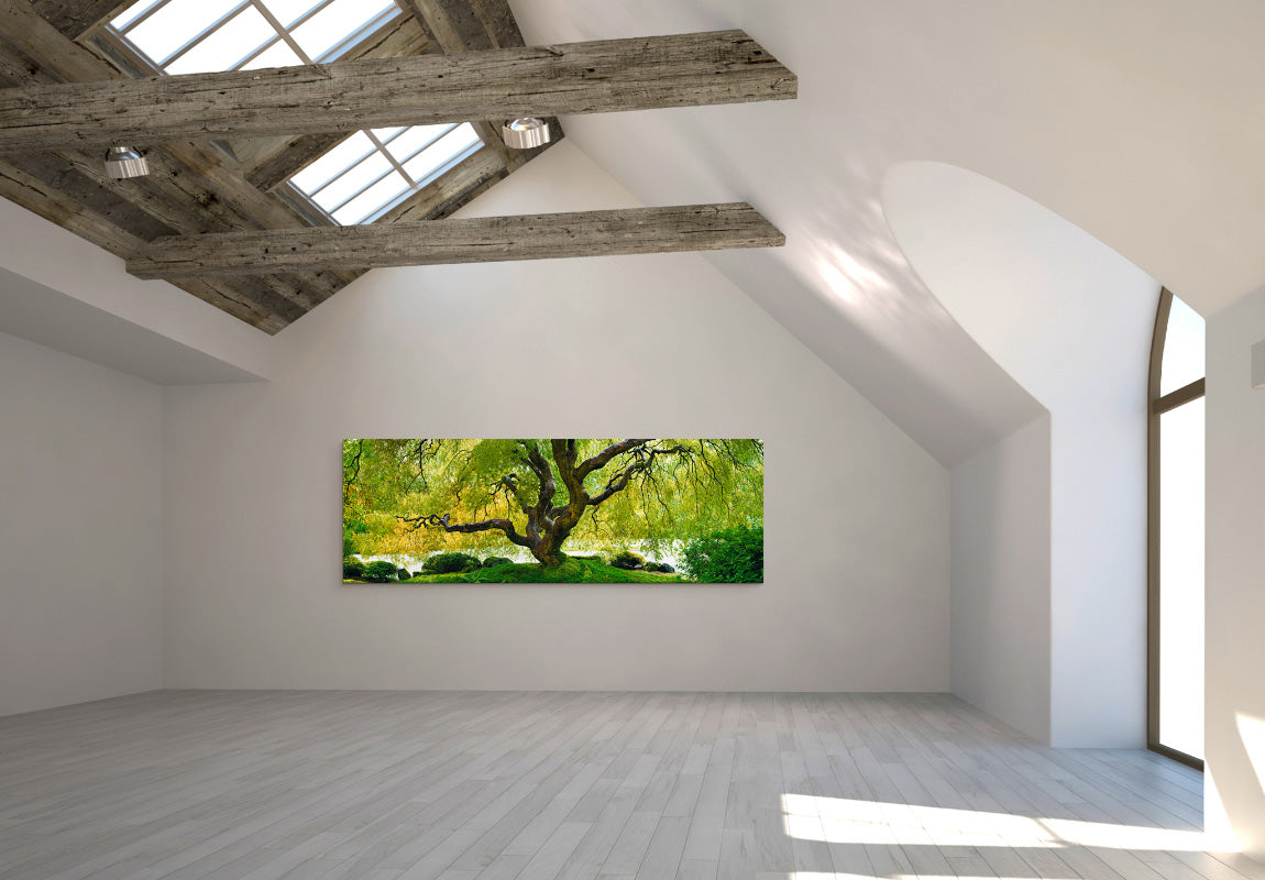 Tree of Serenity in Home