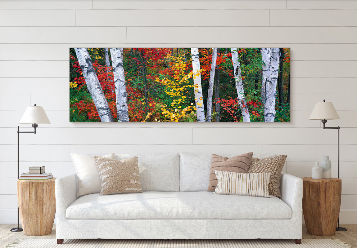 Woodland Mosaic in Home