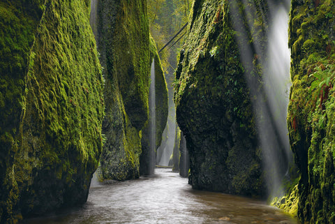 Sun light shining into the moss covered rock walls of the Columbia River Gorge and the river flowing beneath