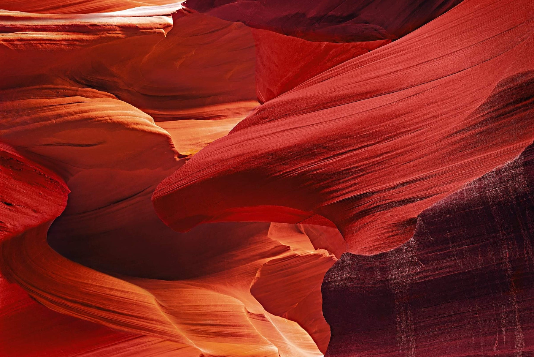 Red and orange eagle shaped sandstone wall within the slot canyons in Antelope Canyon Arizona