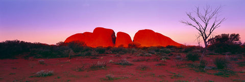 Large domed stone formation Kata Tjuta during sunset surrounded by the desert of Uluru-Kata Tjuta National Park Australia