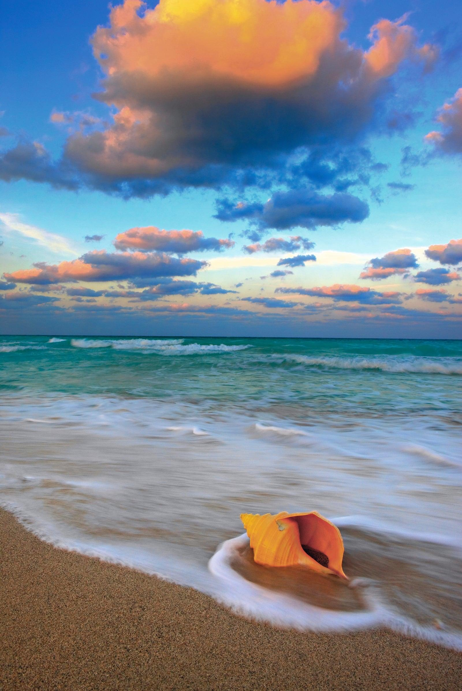 Waves washing onto a conch shell on the sands of South Beach Miami on a cloudy day