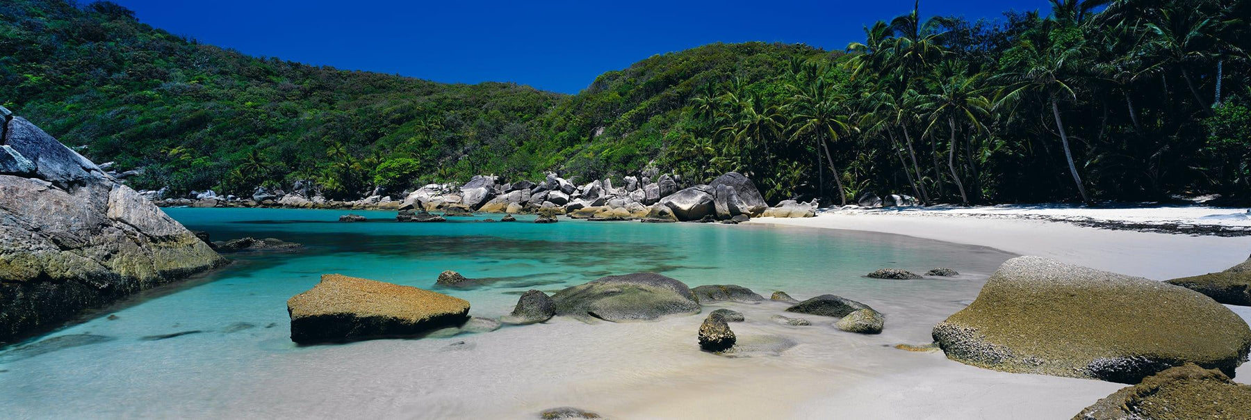 Lagoon filled with boulders along a palm tree filled beach at Bedarra Island Australia