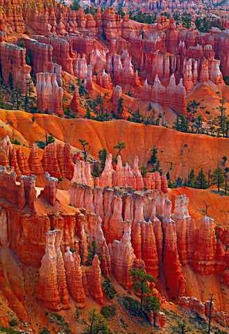 Tree covered red rock hoodoo monuments of Bryce Canyon Utah