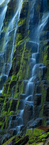 Water pouring down a moss covered black rock wall at Proxy Falls Oregon