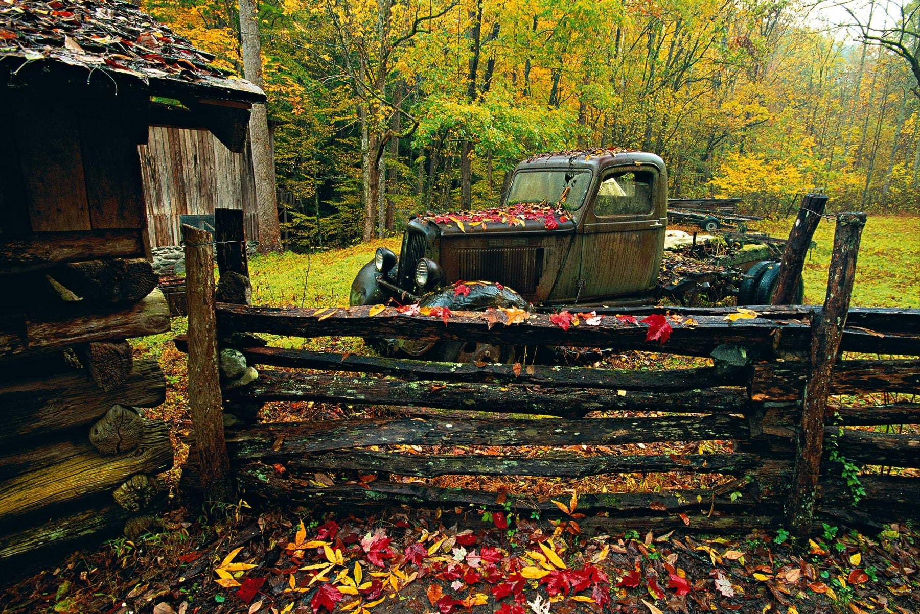 Leaf covered shack fence and old truck in Great Smoky Mountains National Park Tennessee in Autumn