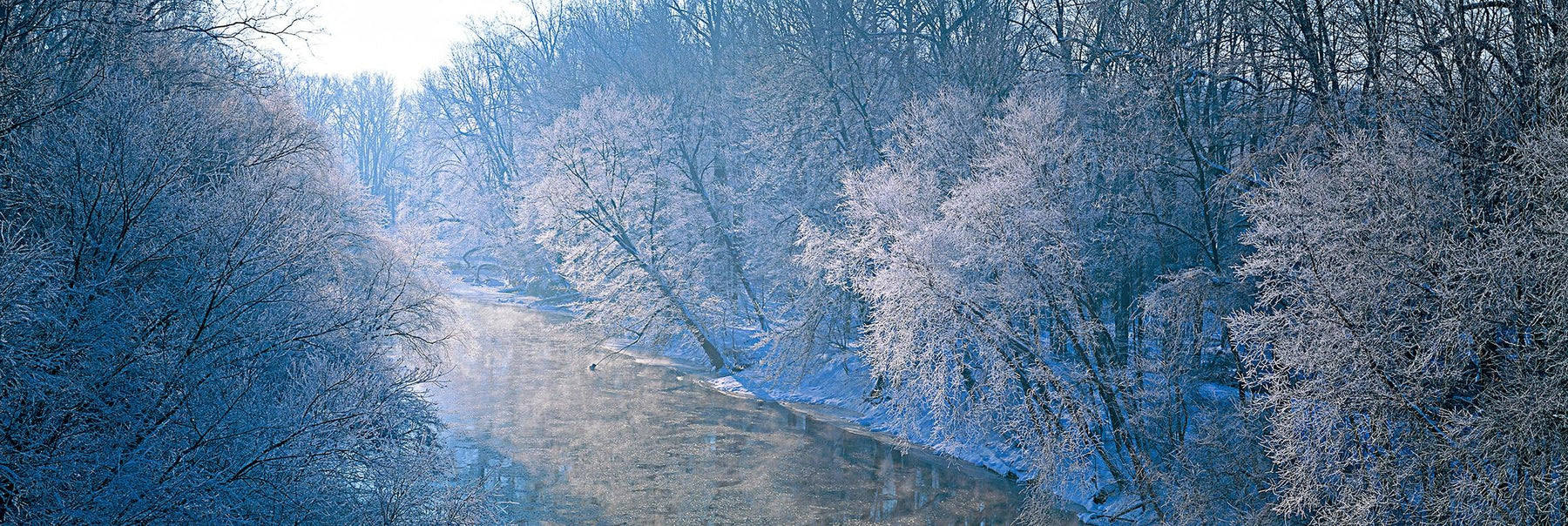 Sun shining through the frozen forest of trees surrounding a river in Wayne National Forest Ohio