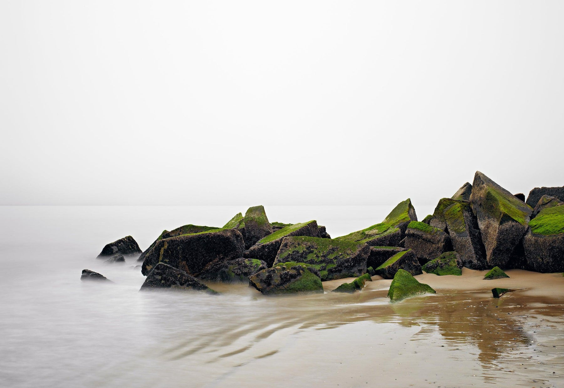 Moss covered rocks on the beach on the waters edge of Coney Island New York