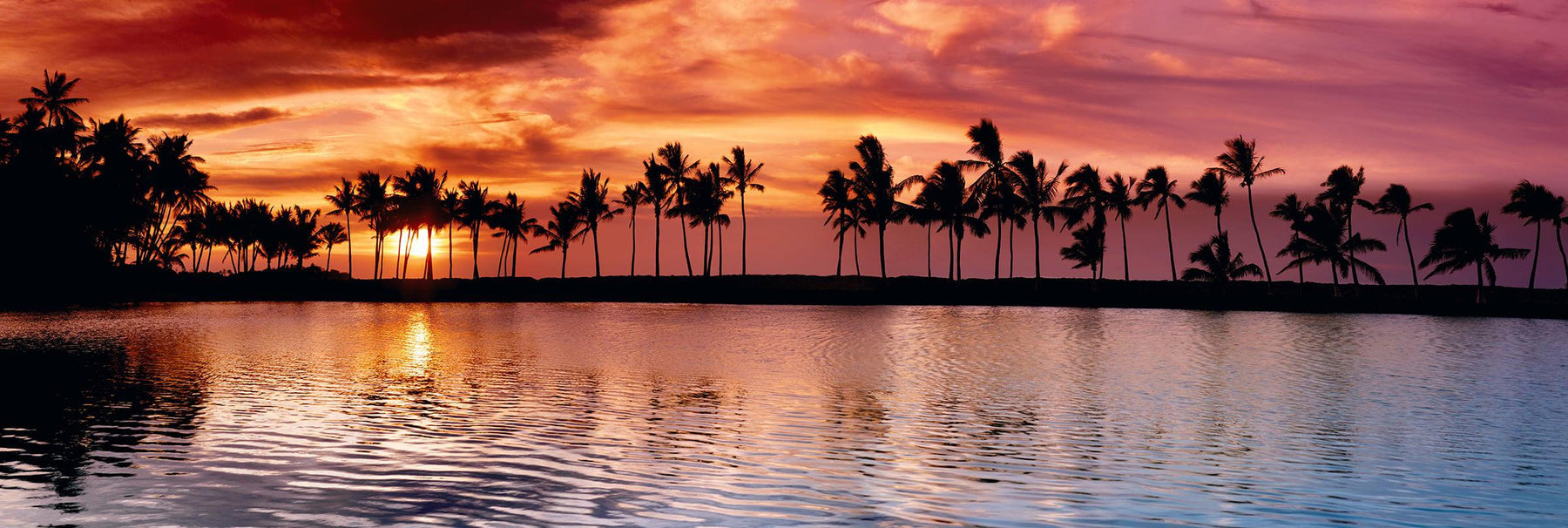 Setting sun and palm tree silhouettes reflecting off an inlet along the shore of The Big Island Hawaii