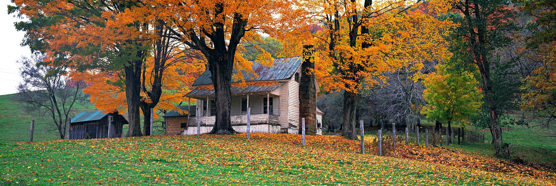 Old cottage and shack surrounded by Autumn colored trees in the leaf covered hills of Meadow River West Virginia