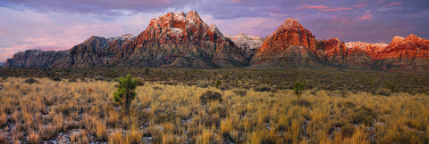 Grass and brush filled desert valley in front of the snow covered mountains of Red Rock Canyon Nevada