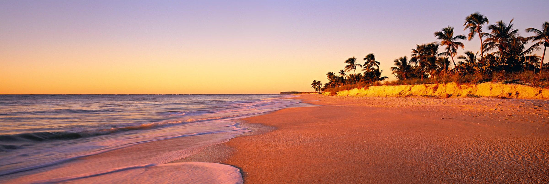 Golden sand beach lined with Palm trees on the shores of Captiva Island Florida
