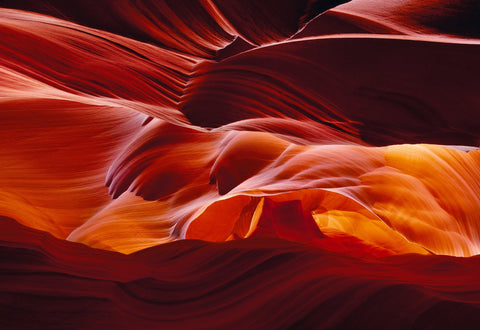 Red orange and yellow wave shaped sandstone walls of the slot canyons in Antelope Canyon Arizona
