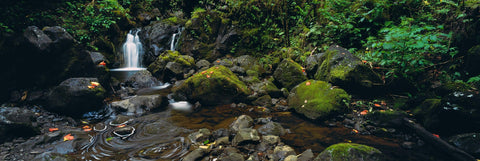Waterfall pouring out of a tropical rainforest into a rock filled river on the Pipiwai Trail Hawaii