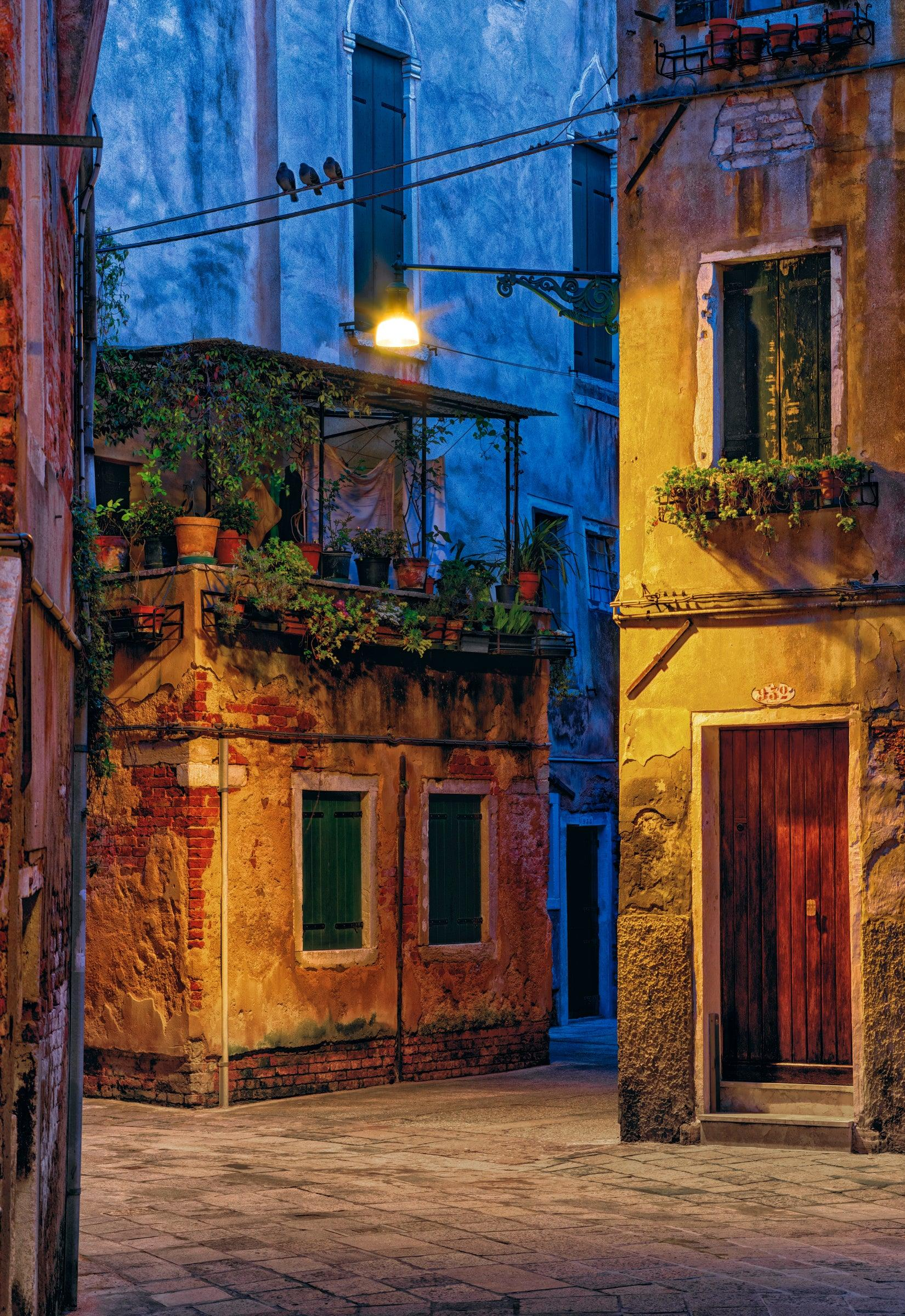 Rustic old facade of buildings covered with plants in Venice Italy at dawn
