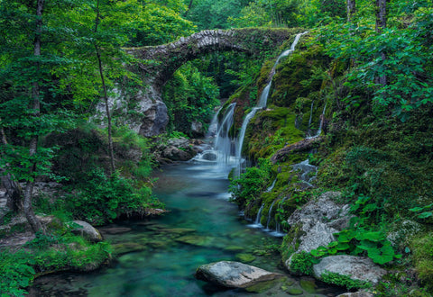 Old stone bridge arching over a moss covered waterfall and stream in a green forest in Casaletto Spartano Italy