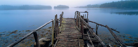 Old wooden jetty in a misty inlet full of trees in Peggy's Cove Nova Scotia