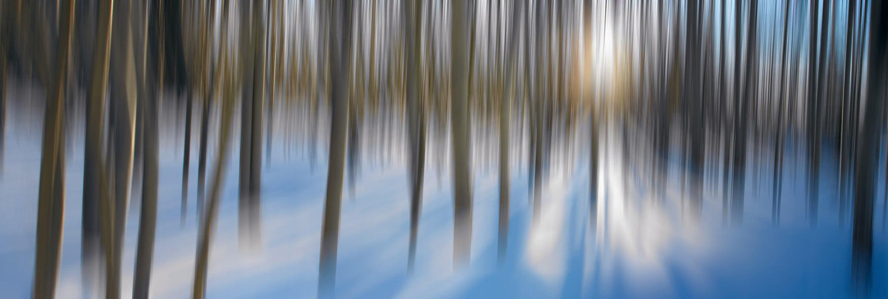 Moon shining through a blurred snow covered forest in Aspen Colorado