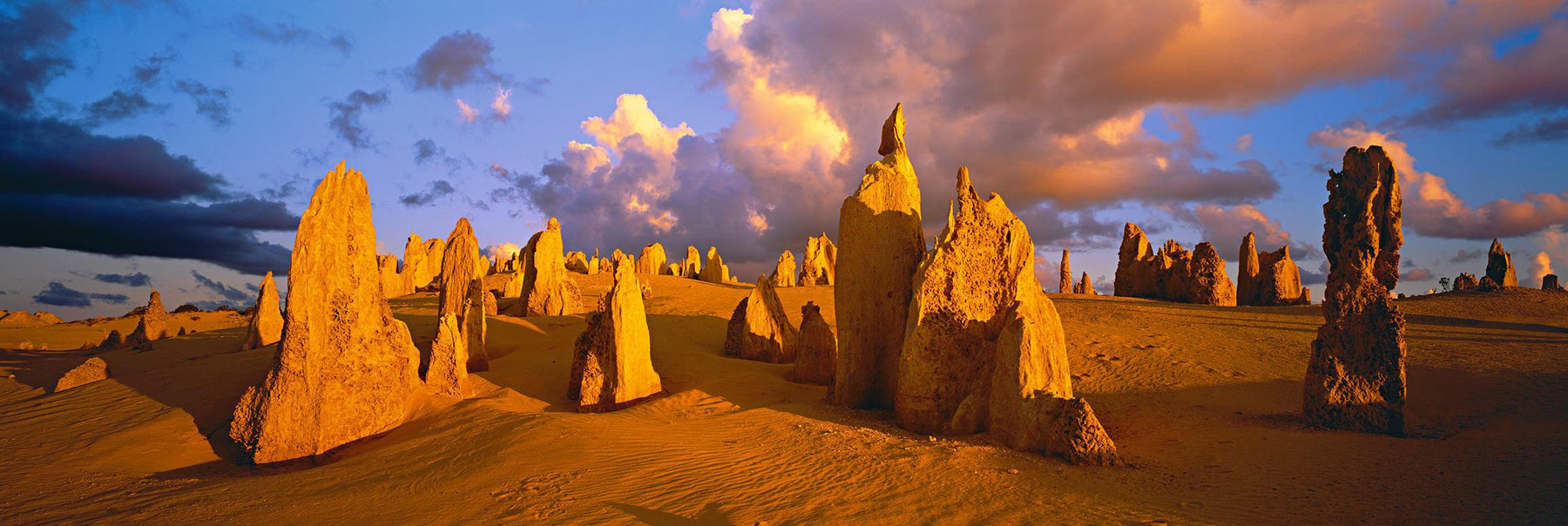 Termite mounds on sand dunes in the Pinnacles Desert Nambung National Park Australia