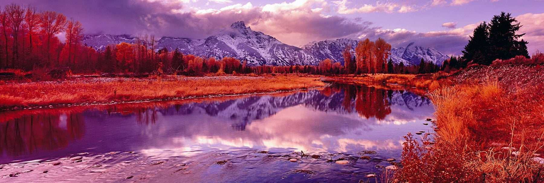 Snow covered Grand Teton Mountains and orange foliage reflecting into the Snake River at sunset