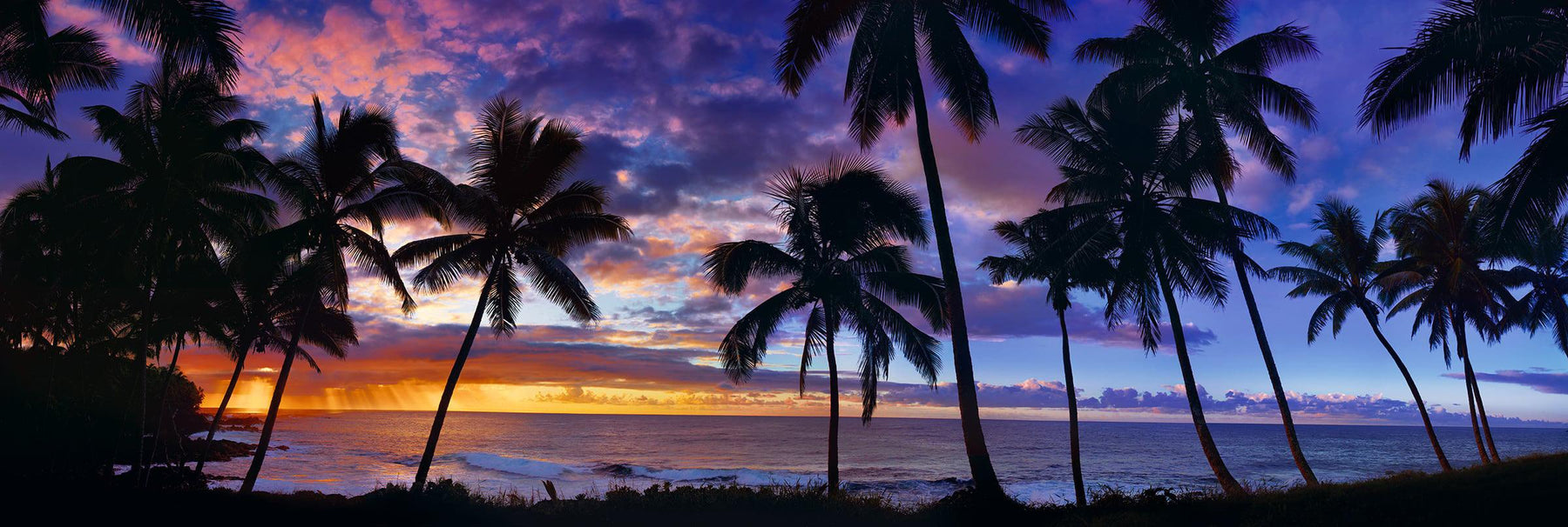 Palm tree silhouettes on a beach in Kapoho Hawaii with the sun rising through the clouds in the distance