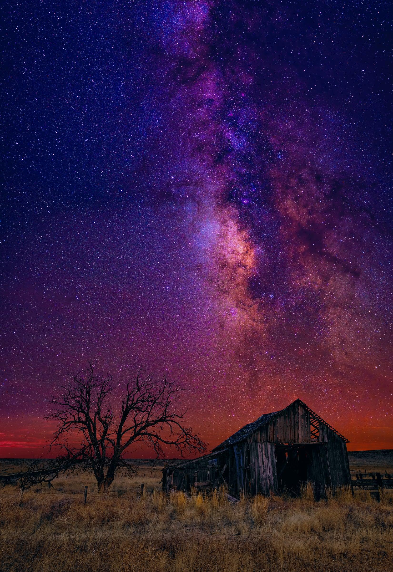 Old wooden shack and tree in a grass field at night under a sky filled with stars and the Milky Way