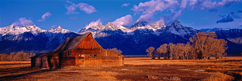 Old wooden barn in a dirt field with trees with snow capped mountains of the Grand Teton National Park Wyoming