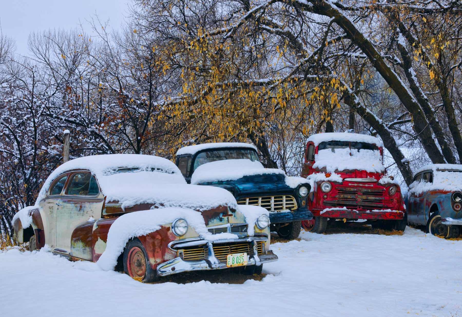 Old broken down cars covered with snow along the forests edge in Glendale Utah
