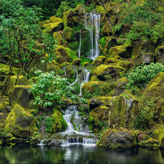 Waterfall flowing down a plant and moss covered rocky hillside in Oregon