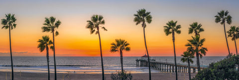 Line of palm trees in front of the Manhattan Beach Pier California with an orange glowing horizon at sunset