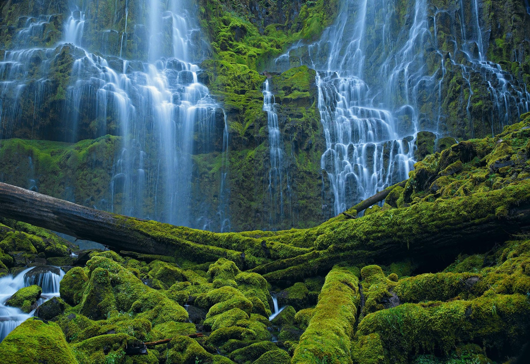 Waterfalls pouring over a moss covered rock wall and under fallen trees in Bend Oregon