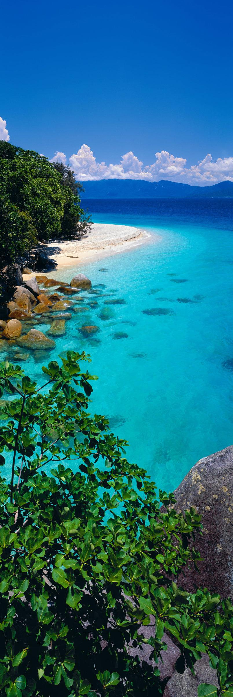 Foliage on the edge of a rock ledge looking down at the white sand beach of Fitzroy Island Australia