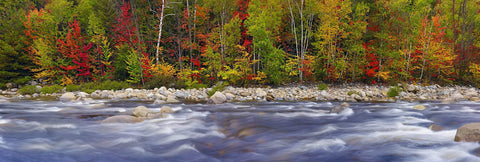 River flowing over rocks in front of a forest with some Autumn colors in White Mountain National Forest New Hampshire