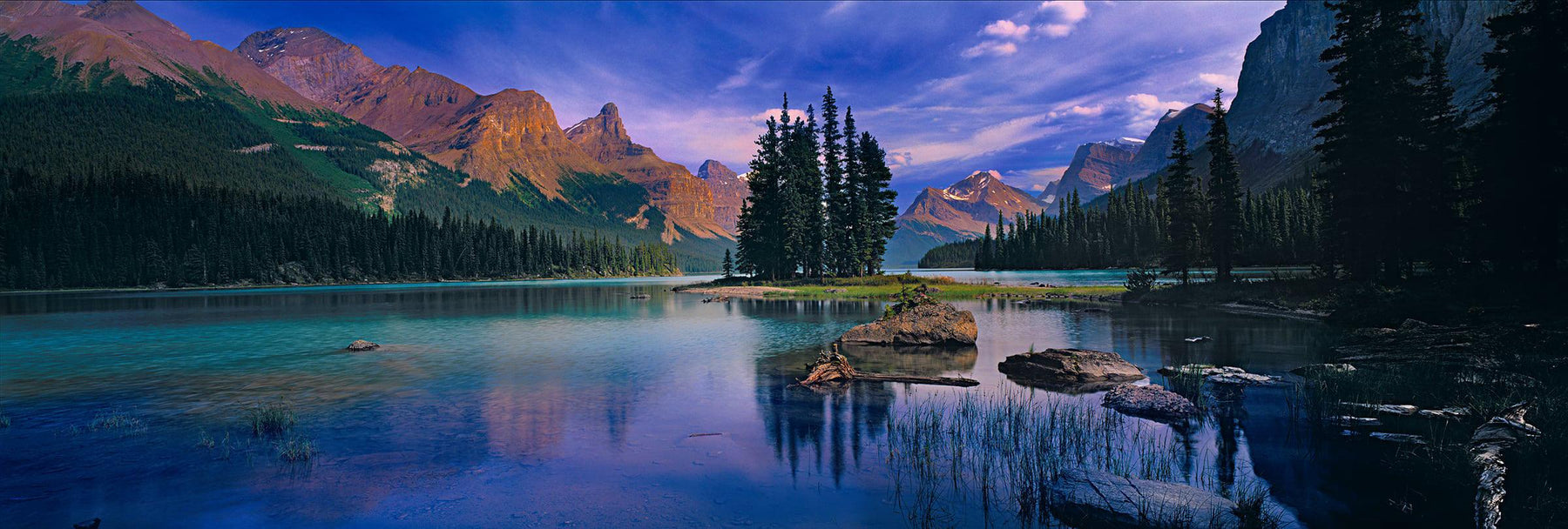 Group of Pine trees on a small island in Maligne Lake Canada surrounded by forests and mountains