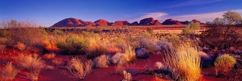 Brush filled desert with the stone formations of Kata Tjuta National Park Australia in the background