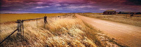 Dirt road running along a fenced wheat field in Burra Australia with an old house in the background